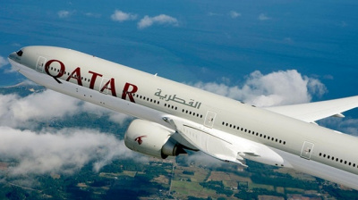 Qatar Airways said to cancel flight after multiple bird impacts