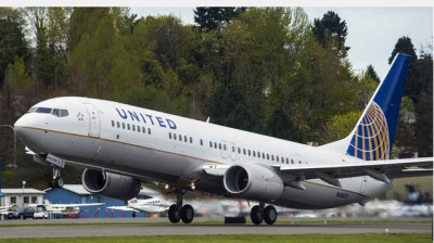 Dog dies after being placed in the overhead locker on United Airlines flight