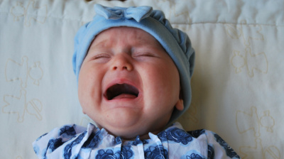 'Crying baby tweet' sparks interest in Japan Airlines' booking feature