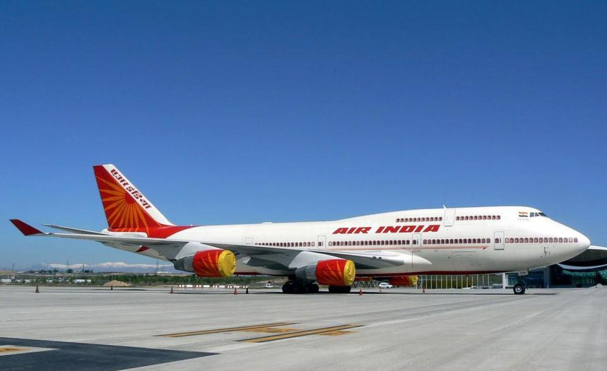 State-owned carrier Air India's share in the total domestic passenger traffic further slid to 12.7% in 2018 from 13.3% in the previous year.